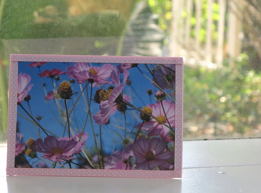 monets bees card