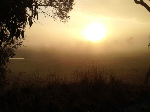 3 sunrise fog