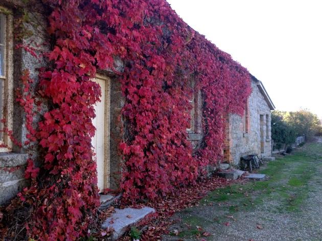 historic autumn2