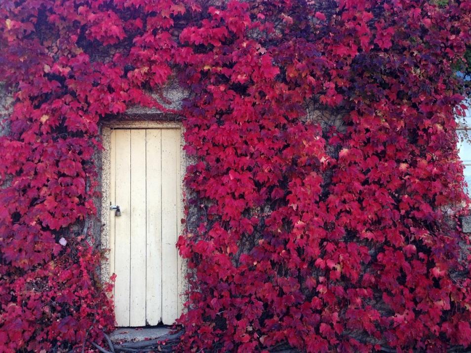historic autumn3