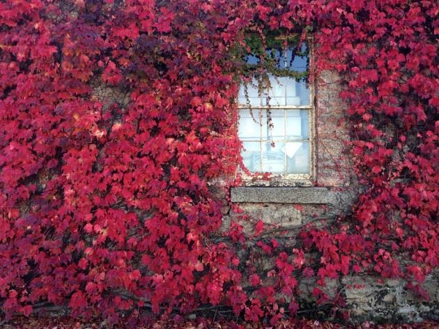 historic autumn4